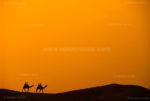 Sand Dunes in Khuri- Jaisalmer, Rajasthan