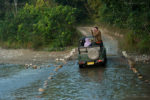 Jim Corbett National Park- You Don't come here for the Tigers.