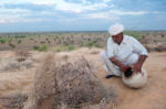 Ranaram Bishnoi- The 75 year Old  who Stopped the March of the Desert