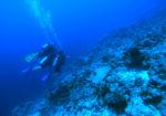 Mystical Underwater in Maldives